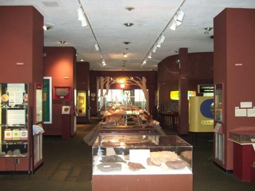 GP Museum 4