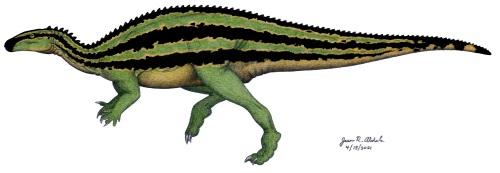 Camptosaurus 5